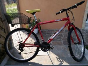 Mountain-bike, city-bike, porta - bici 3posti