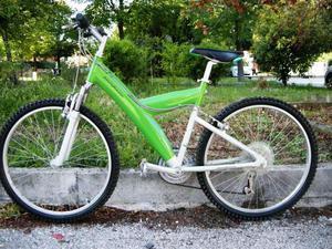 Bicicletta Pininfarina Verde Posot Class