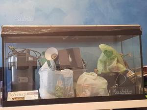 Due acquari per tartarughe posot class for Luci per tartarughe