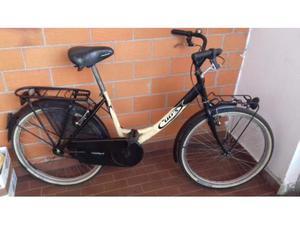 Bicicletta da donna/uomo