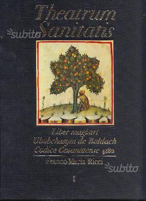 Theatrum Sanitatis. Liber Magistri. Codice Casanat