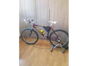 Mountain bike Bianchi + Rullo Minoura