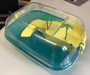Tartarughe d acqua con tartarughiera posot class for Filtro vasca tartarughe
