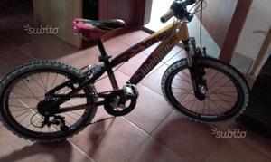 Bici Lombardo bimbo