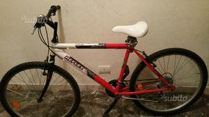 Mountain bike bicicletta Reflex 24
