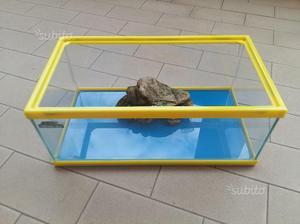 Affare gamberi piccoli o gambusia x acquario posot class for Acquario per tartarughe piccole