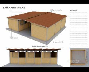 Box Cavalli Ditta Rinco Usati Posot Class