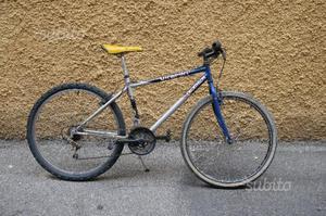 Bicicletta da uomo mountain bike