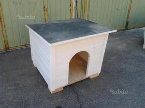 Cucce di cani e gatti
