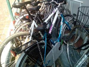 Bicicletta donna blu