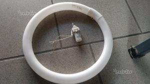 Circolina Neon 32W tipo 840C luce bianca calda