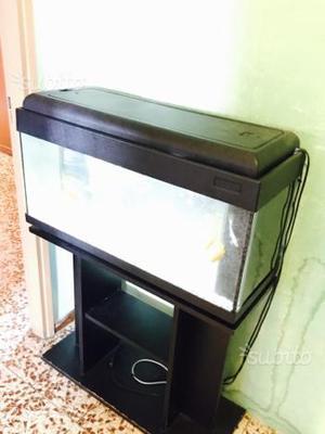 Regalo acquario 80 posot class for Acquario 100 litri