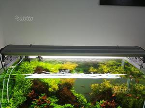 Plafoniere T5 Per Acquari : Acquario plafoniera liton w aquaristica posot class
