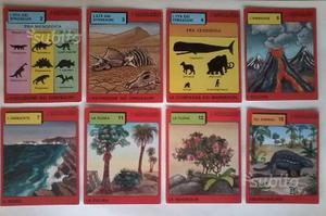 I dinosauri - cards da collezione