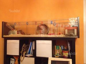 Gabbia/Casa per Criceti o piccoli roditori