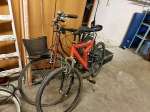 Bici mountain bike e bici da donna