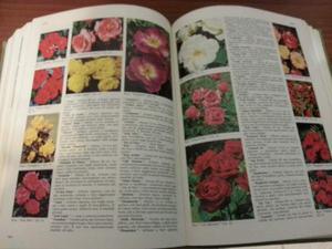 Il grande libro dei fiori e delle piante,agraria,Pomezia