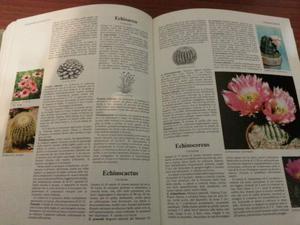 Il grande libro dei fiori e delle piante,spedizione inclusa