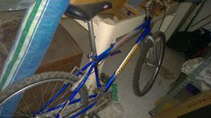 bici mountain bike armaroli anno  cambio campagnolo