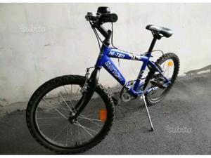 Bicicletta Dino Bike 20 per ragazzi