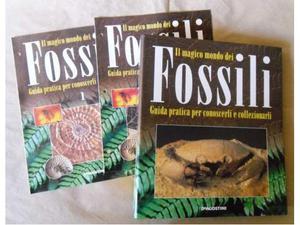 Il Magico Mondo del Fossili - il Magico Mondo di Minerali e