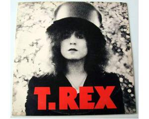 T.rex - the slider made in uk