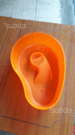 Acquaterrario per tartarughe acquatiche posot class for Tartarughe vaschetta