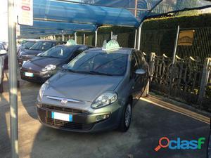 FIAT Punto Evo diesel in vendita a Campolongo Maggiore