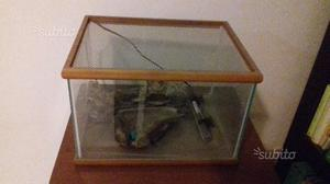 Acquaterraio per tartarughe lacustri posot class for Termoriscaldatore per tartarughe