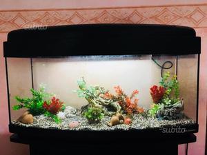 Motorino per acquario posot class for Acquario 300 litri prezzo
