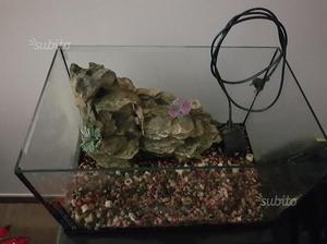 Acquario per pesci o tartarughe posot class for Acquario per tartarughe piccole