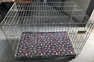 Gabbia box trasportino per cani