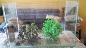 Vaschetta in vetro per acquario