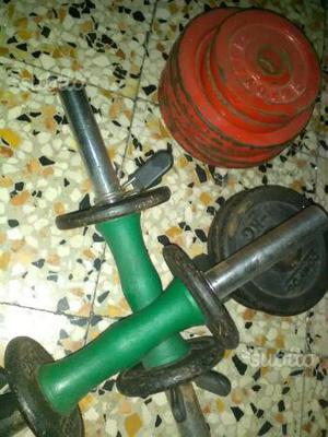 Manubri più pesi per palestra