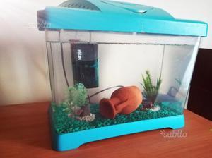 Acquario usato posot class for Filtro acquario usato