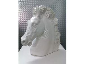 Testa di Cavallo Bianco
