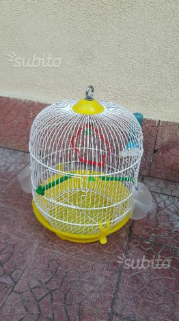 Gabbia uccelli (canarini - pappagalli - ecc)