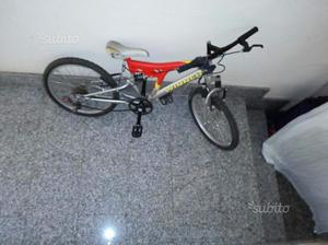 Bici da corsa e mountain bike