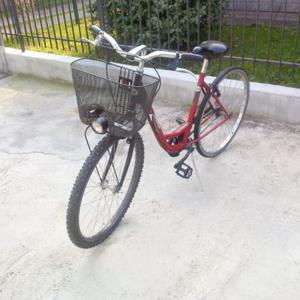 Bici Wega Bike 26 donna