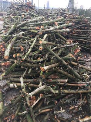 Vendesi impianto segheria spaccatura legna posot class for Legna da ardere brianza