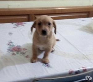 Ofelia ha 2 mesi. La mamma pesa 7 kg