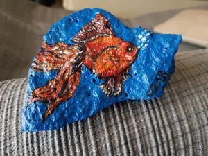 Pesce oranda posot class for Pesce oranda