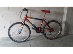 Bicicletta mountain bike 24