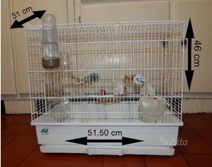 Gabbia per pappagallini o piccoli uccelli