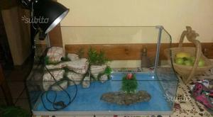 Tartarughiera completa posot class for Depuratore acquario tartarughe