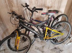 2 biciclette mountain bike