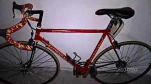 Bici raimondi posot class for Bici ripiegabili