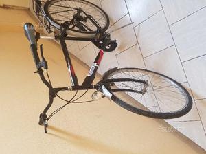 Biciclette da 28 da uomo