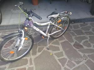 "Mountain bike 24"""