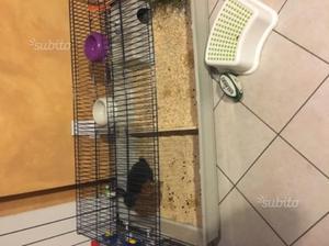 Gabbia Ferplast Rabbit 140